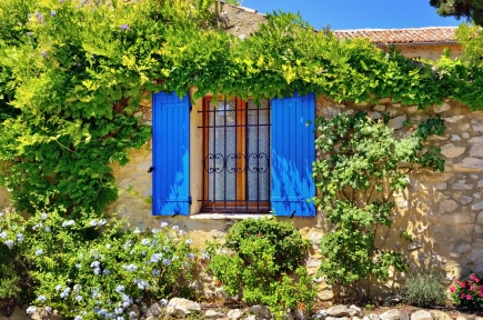 France, Provence. Typical old house, open window with the blue shutters surrounded a green plant at bright sunny day